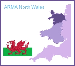 Understanding between Health Board and North Wales ARMA