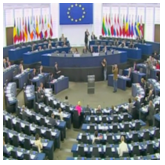 European Parliament & Call to Action