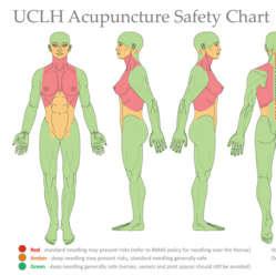 New Acupuncture websites from the BAcC